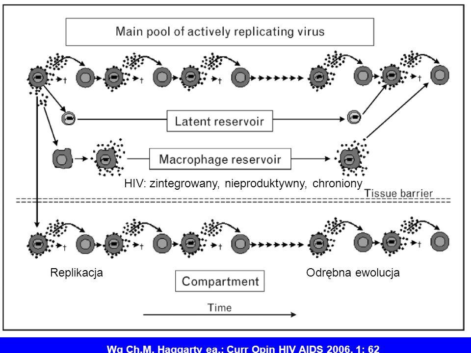 22 Wg Ch.M. Haggarty ea.: Curr Opin HIV AIDS 2006, 1: 62 ReplikacjaOdrębna ewolucja HIV: zintegrowany, nieproduktywny, chroniony