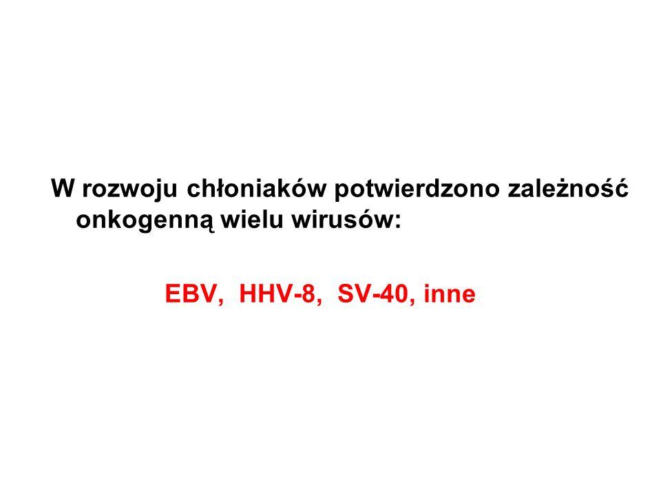 W rozwoju chłoniaków potwierdzono zależność onkogenną wielu wirusów: EBV, HHV-8, SV-40, inne