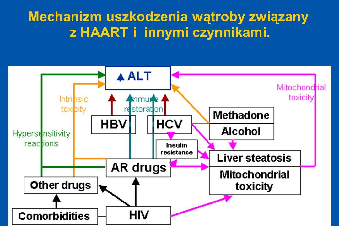 ODTA Chorzów ODTA Chorzów Mechanizm uszkodzenia wątroby związany z HAART i innymi czynnikami.