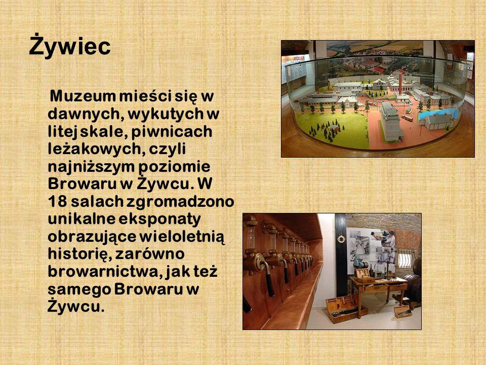 Żywiec Muzeum mie ś ci si ę w dawnych, wykutych w litej skale, piwnicach le ż akowych, czyli najni ż szym poziomie Browaru w Ż ywcu. W 18 salach zgrom