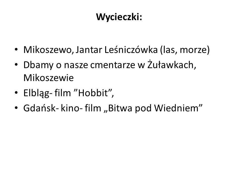 Wycieczki: Mikoszewo, Jantar Leśniczówka (las, morze) Dbamy o nasze cmentarze w Żuławkach, Mikoszewie Elbląg- film Hobbit, Gdańsk- kino- film Bitwa po