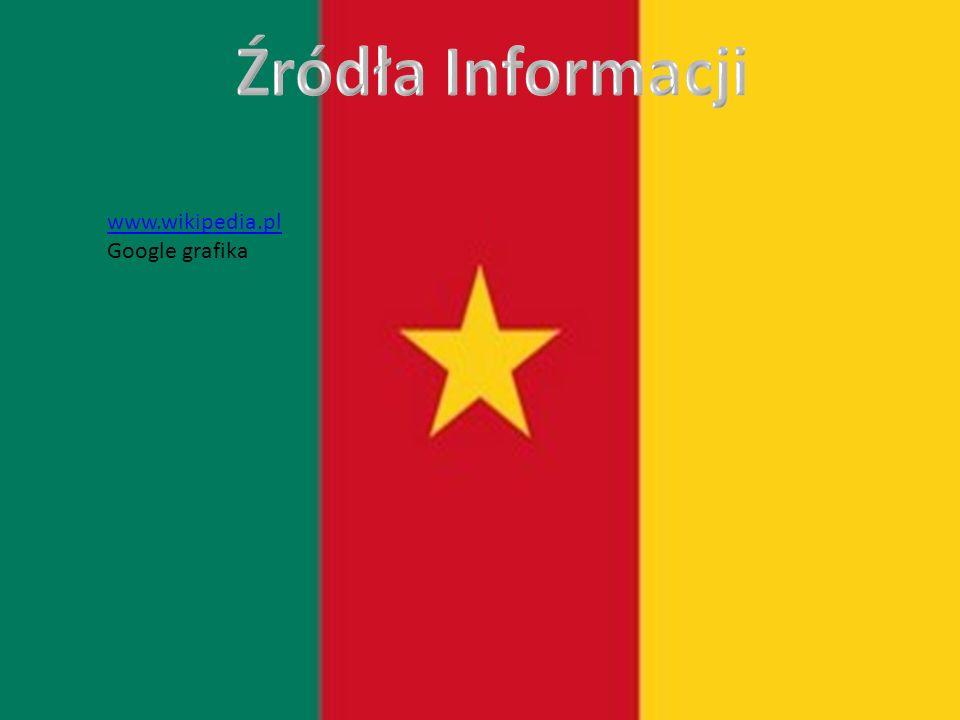 www.wikipedia.pl Google grafika