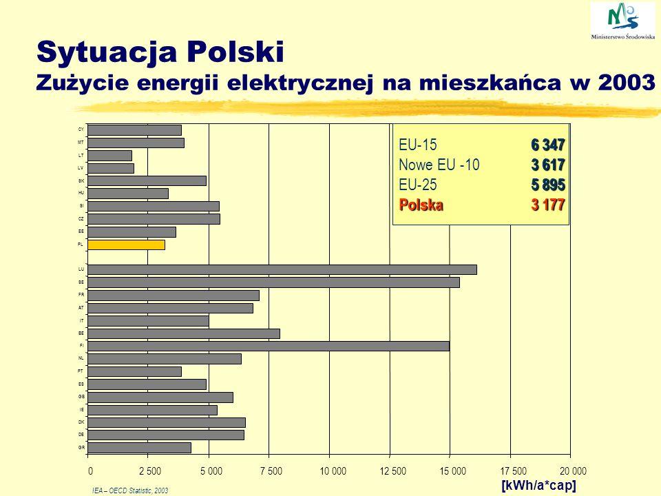 Sytuacja Polski Zużycie energii pierwotnej na mieszkańca 0 1 2 3 4 5 199419951996199719981999200020012002 [toe/cap] Polska EU-15 Źródło: Roczniki statystyczne GUS, Energy Balances of OECD Countries