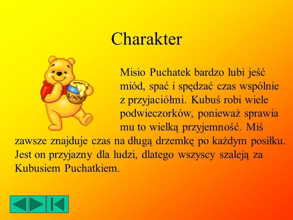 Przyjaciele Kubuś Puchatek jest wiernym przyjacielem Prosiaczka, Tygryska oraz Kłapouchego, ale lubi spędzać czas również z Królikiem, Kangurzycą, Kangurzątkiem, Sową i swoim doradcą - Krzysiem.