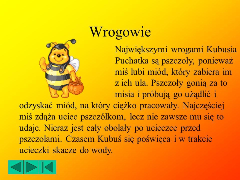 Dla Kubusia Puchatka Agnieszka Baczyńska
