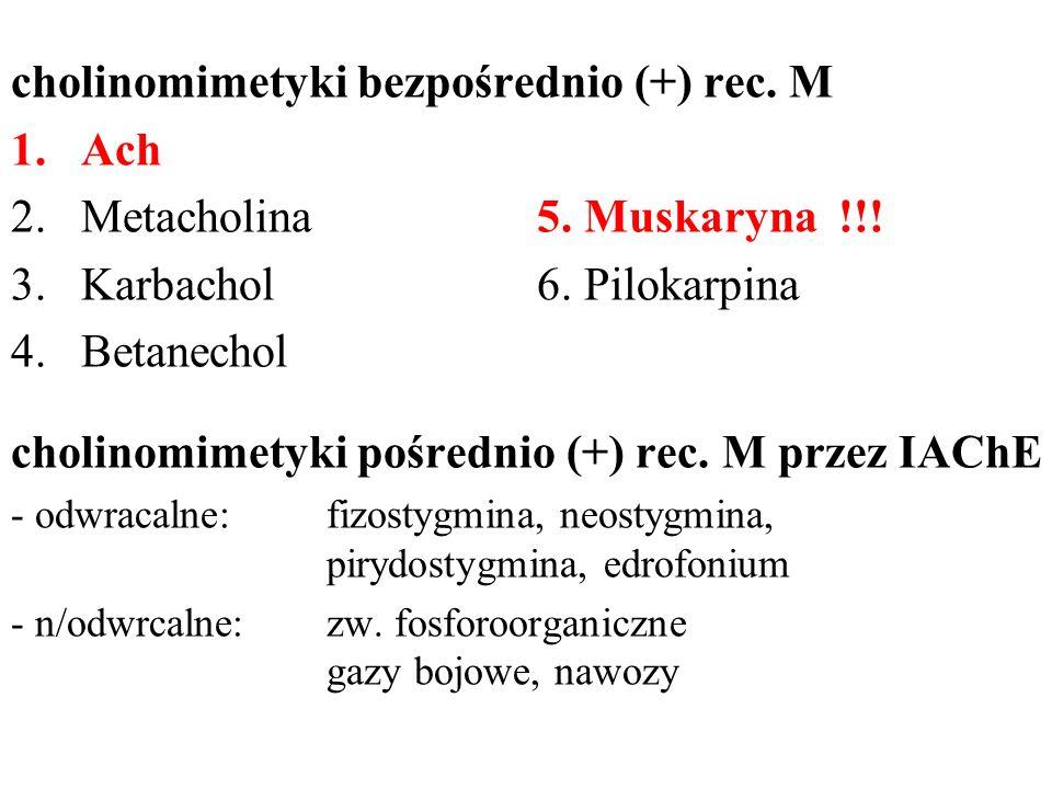 cholinomimetyki bezpośrednio (+) rec. M 1.Ach 2.Metacholina5. Muskaryna !!! 3.Karbachol6. Pilokarpina 4.Betanechol cholinomimetyki pośrednio (+) rec.