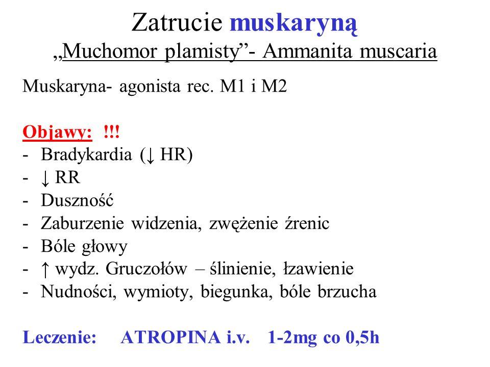 Zatrucie muskarynąMuchomor plamisty- Ammanita muscaria Muskaryna- agonista rec. M1 i M2 Objawy: !!! -Bradykardia ( HR) - RR -Duszność -Zaburzenie widz