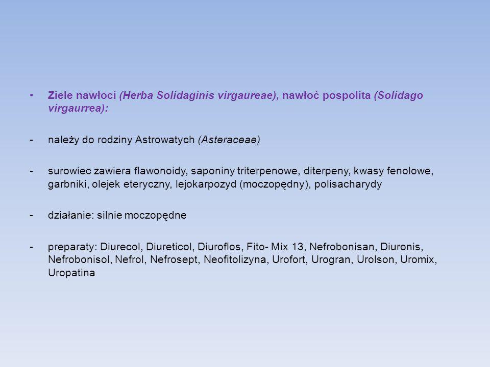 Ziele nawłoci (Herba Solidaginis virgaureae), nawłoć pospolita (Solidago virgaurrea): -należy do rodziny Astrowatych (Asteraceae) -surowiec zawiera fl