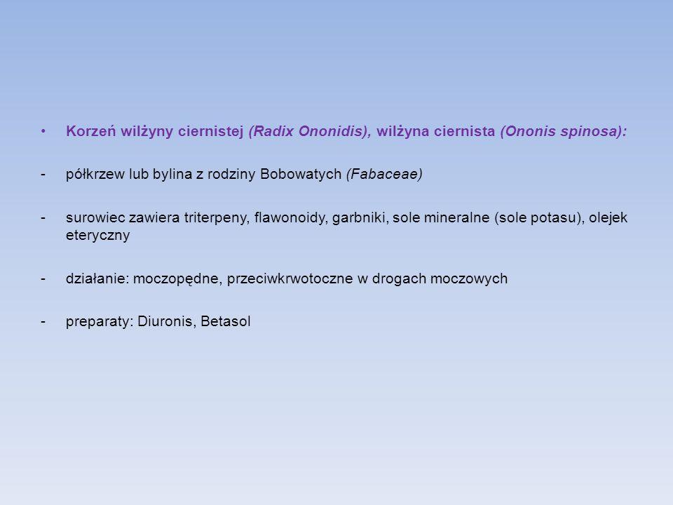 Korzeń wilżyny ciernistej (Radix Ononidis), wilżyna ciernista (Ononis spinosa): -półkrzew lub bylina z rodziny Bobowatych (Fabaceae) -surowiec zawiera