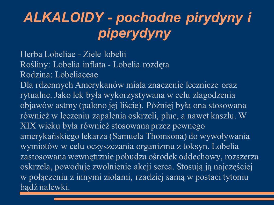Herba Lobeliae - Ziele lobelii Rośliny: Lobelia inflata - Lobelia rozdęta Rodzina: Lobeliaceae Dla rdzennych Amerykanów miała znaczenie lecznicze oraz