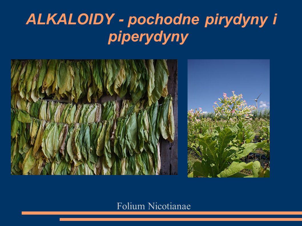 Folium Nicotianae ALKALOIDY - pochodne pirydyny i piperydyny