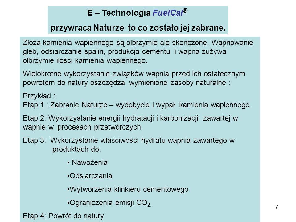 28 Reagent + Surowce Reaktor FuelCal ® Strefa Quasi - fluidalna Reaktor FuelCal ® Węzeł Domielenia Układ napędowy Układ odciągu i wykraplania Gazy Skropliny Izolacja cieplna Technologia FuelCal Gazowy stężony dwutlenek węgla lub gazy odpadowe zawierające dwutlenek węgla.