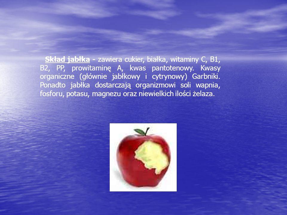 Skład jabłka - zawiera cukier, białka, witaminy C, B1, B2, PP, prowitaminę A, kwas pantotenowy. Kwasy organiczne (głównie jabłkowy i cytrynowy) Garbni