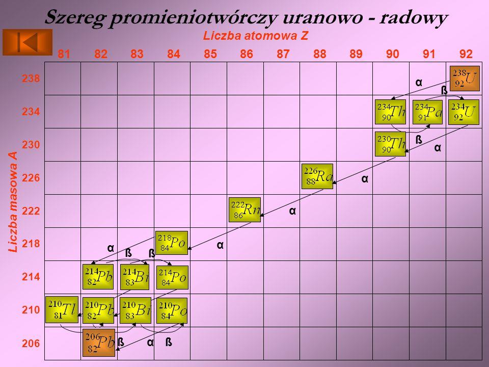 Szereg promieniotwórczy uranowo - radowy Liczba atomowa Z 929190898887868584838281 Liczba masowa A 206 210 214 218 222 226 230 234 238 α ß ß α α α α α ß α ß ß α ßß trwały izotop α