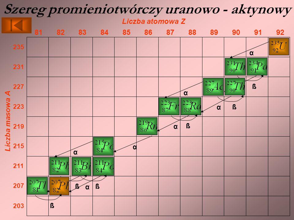 Szereg promieniotwórczy uranowo - aktynowy Liczba atomowa Z 929190898887868584838281 Liczba masowa A 203 207 211 215 219 223 227 231 235 α ß α ß αα ß ααα ß α ß trwały izotop α ß