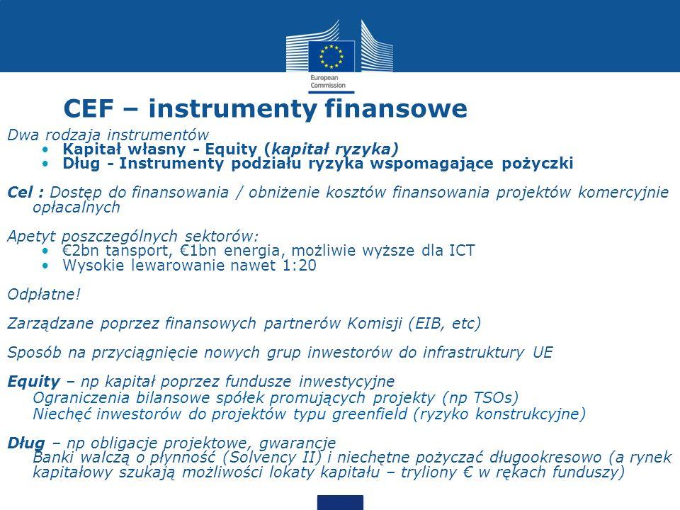 CEF – instrumenty finansowe Dwa rodzaja instrumentów Kapitał własny - Equity (kapitał ryzyka) Dług - Instrumenty podziału ryzyka wspomagające pożyczki
