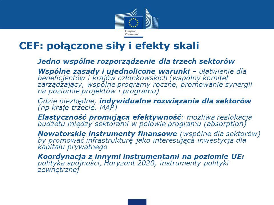 CEF: połączone siły i efekty skali Scentralizowane zarządzanie subsydiami Konkursy (calls for proposals) Zasada use it or lose it (1-2 lata) promująca efektywność Efekty skali oraz synergie by obniżyć koszty administracji Możliwa eksternalizacja zadań administracyjnych do agencji wykonawczej (TEN-TEA?) Kraje członkowskie (i promotorzy projektów) niezmiennie odpowiedzialni za postęp prac przy projektach