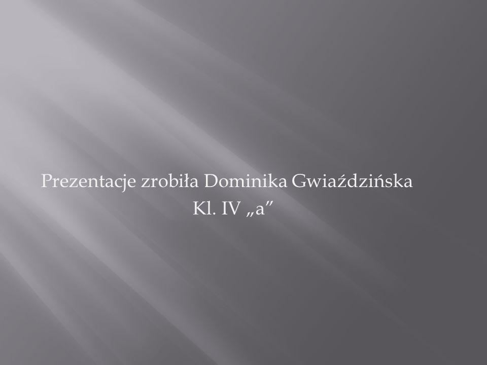 Prezentacje zrobiła Dominika Gwiaździńska Kl. IV a