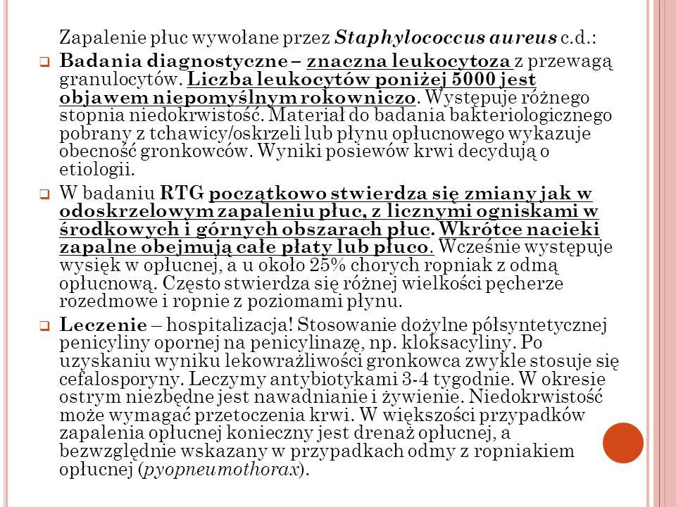 Zapalenie płuc wywołane przez Staphylococcus aureus c.d.: Badania diagnostyczne – znaczna leukocytoza z przewagą granulocytów. Liczba leukocytów poniż