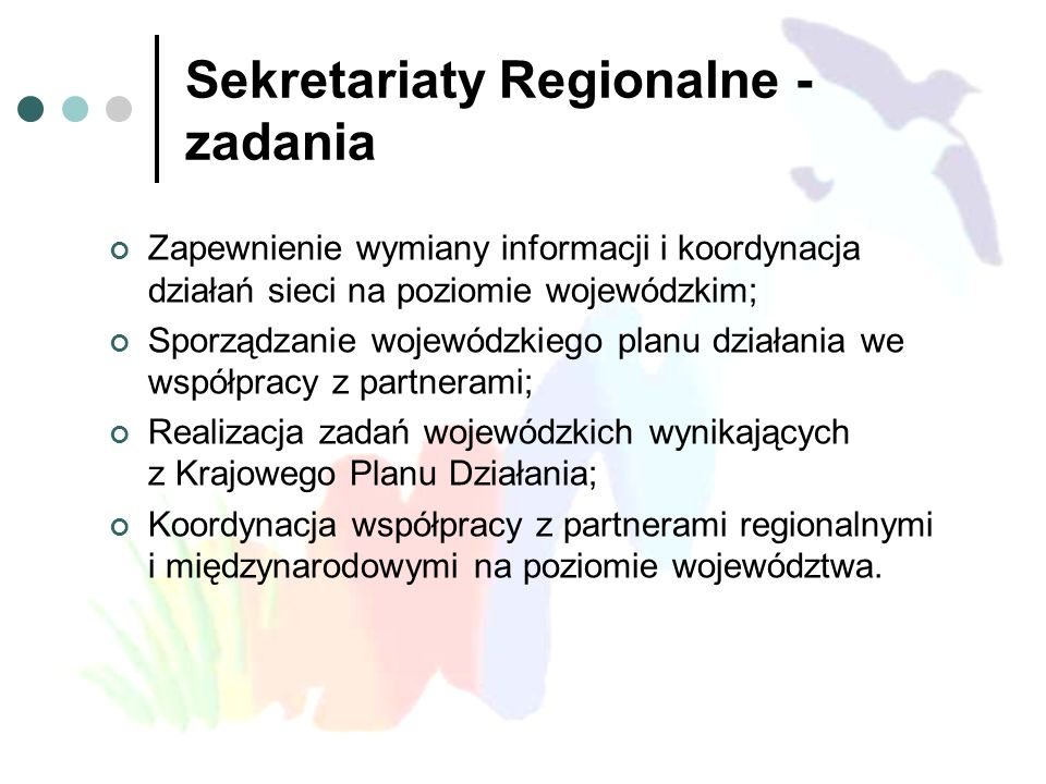Sekretariaty Regionalne - zadania Zapewnienie wymiany informacji i koordynacja działań sieci na poziomie wojewódzkim; Sporządzanie wojewódzkiego planu działania we współpracy z partnerami; Realizacja zadań wojewódzkich wynikających z Krajowego Planu Działania; Koordynacja współpracy z partnerami regionalnymi i międzynarodowymi na poziomie województwa.