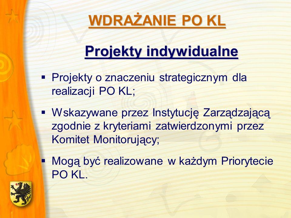 Projekty indywidualne Projekty o znaczeniu strategicznym dla realizacji PO KL; Wskazywane przez Instytucję Zarządzającą zgodnie z kryteriami zatwierdzonymi przez Komitet Monitorujący; Mogą być realizowane w każdym Priorytecie PO KL.