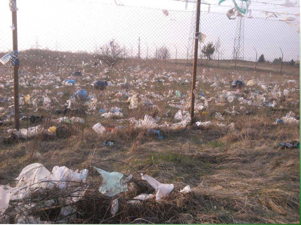 Kwatera odpadów organicznych sierpień 2011