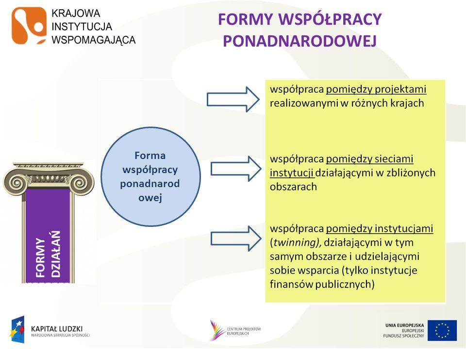 FORMY DZIAŁAŃ FORMY WSPÓŁPRACY PONADNARODOWEJ Forma współpracy ponadnarod owej