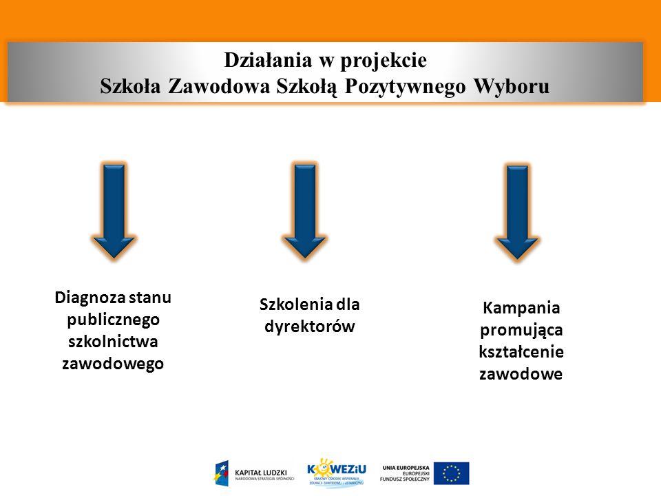 Diagnoza stanu publicznego szkolnictwa zawodowego Szkolenia dla dyrektorów Kampania promująca kształcenie zawodowe Działania w projekcie Szkoła Zawodo