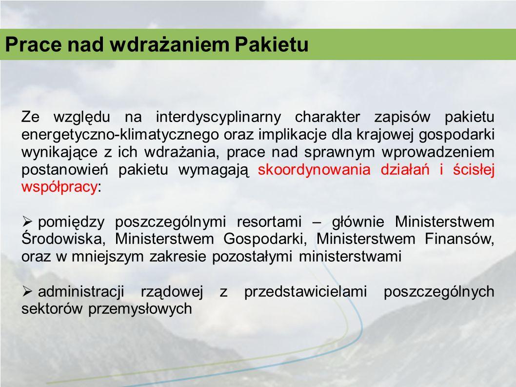 Ze względu na interdyscyplinarny charakter zapisów pakietu energetyczno-klimatycznego oraz implikacje dla krajowej gospodarki wynikające z ich wdrażan