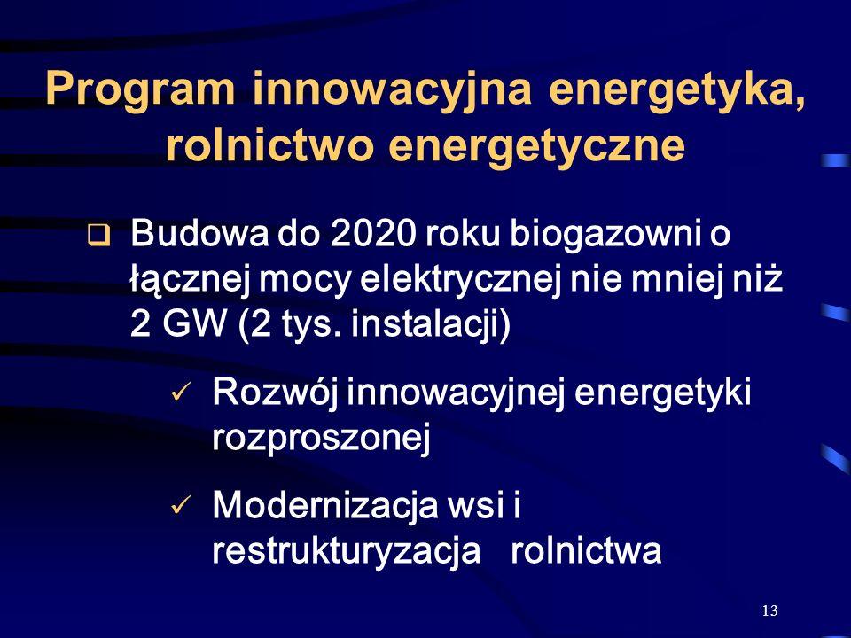 13 Program innowacyjna energetyka, rolnictwo energetyczne Budowa do 2020 roku biogazowni o łącznej mocy elektrycznej nie mniej niż 2 GW (2 tys. instal