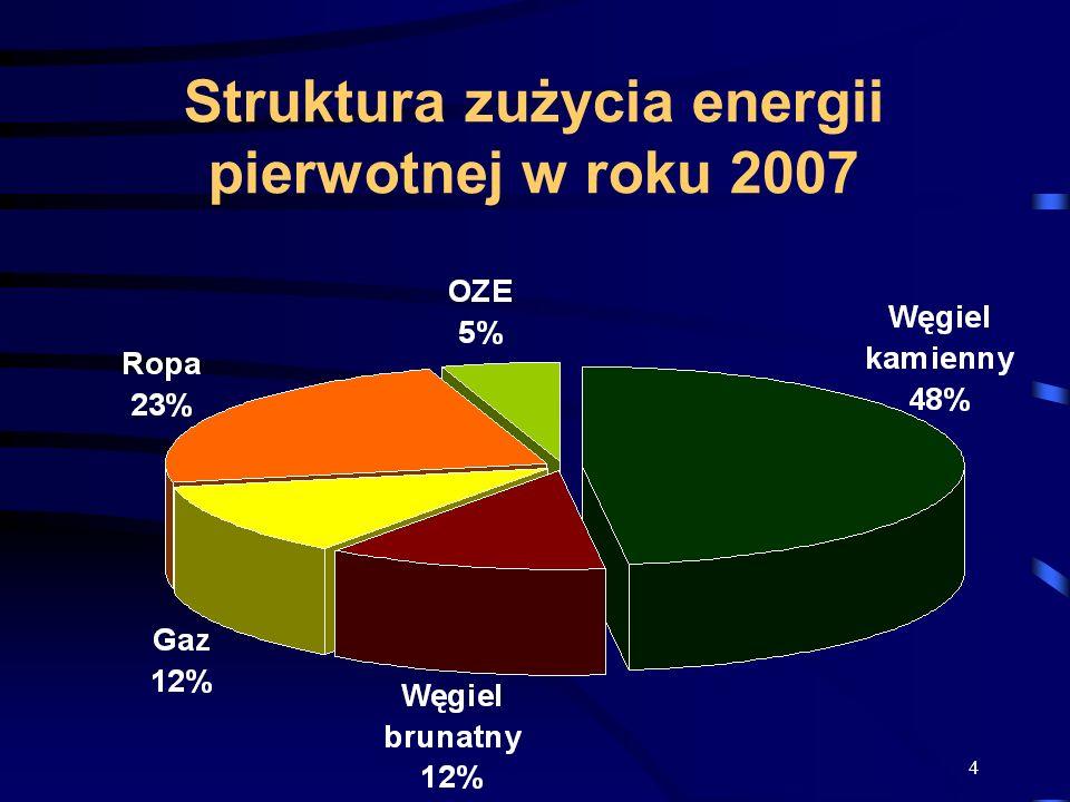 4 Struktura zużycia energii pierwotnej w roku 2007