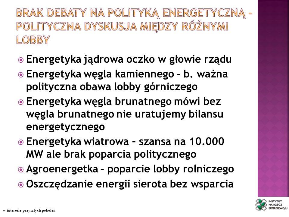 Energetyka jądrowa oczko w głowie rządu Energetyka węgla kamiennego – b.