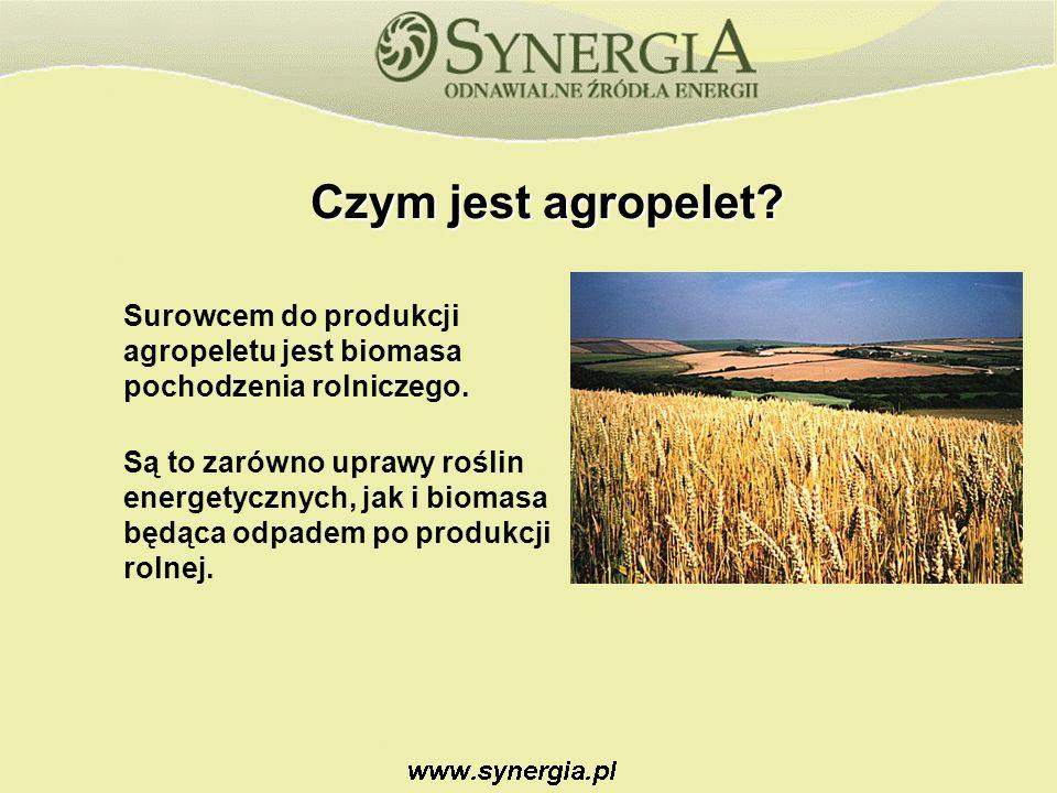 Czym jest agropelet.Surowcem do produkcji agropeletu jest biomasa pochodzenia rolniczego.