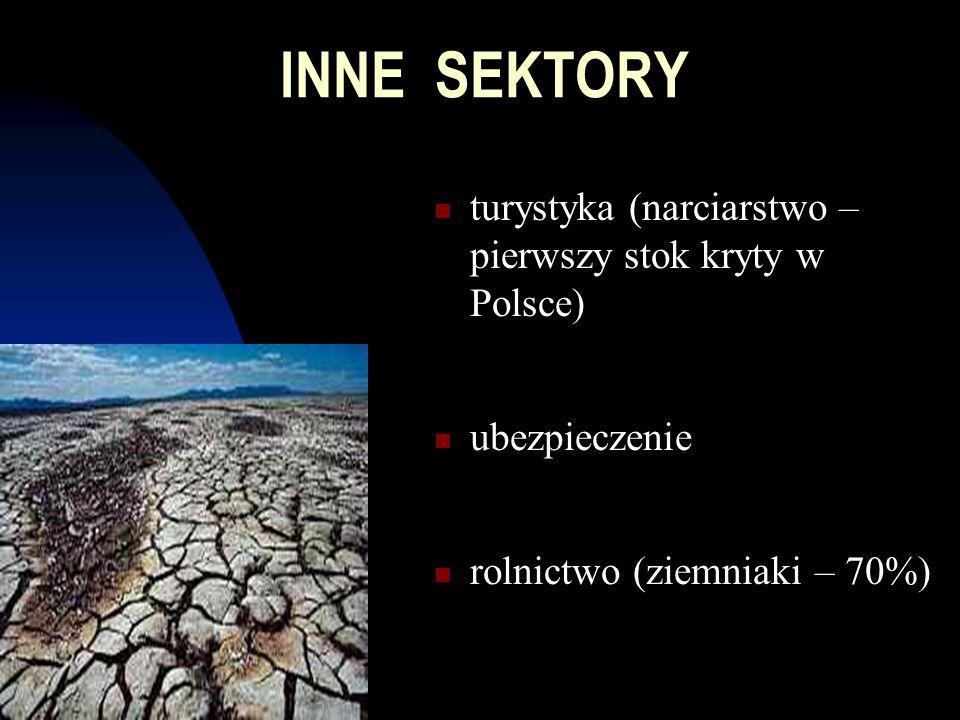 INNE SEKTORY turystyka (narciarstwo – pierwszy stok kryty w Polsce) ubezpieczenie rolnictwo (ziemniaki – 70%)