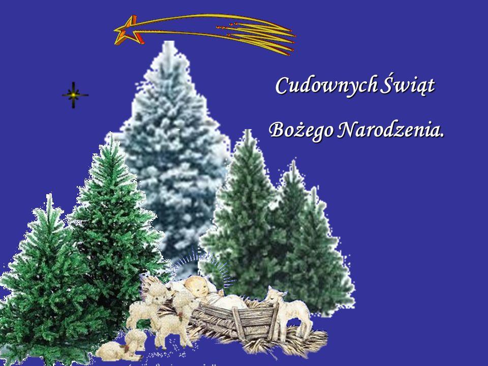 Z okazji zbliżających się Świąt Bożego Narodzenia najserdeczniejsze życzenia