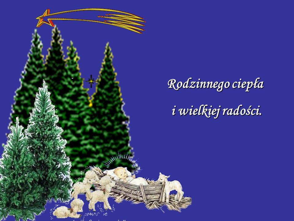 Cudownych Świąt Bożego Narodzenia. Bożego Narodzenia.