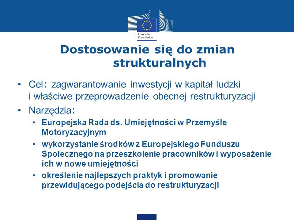 Dostosowanie się do zmian strukturalnych Cel : zagwarantowanie inwestycji w kapitał ludzki i właściwe przeprowadzenie obecnej restrukturyzacji Narzędzia : Europejska Rada ds.