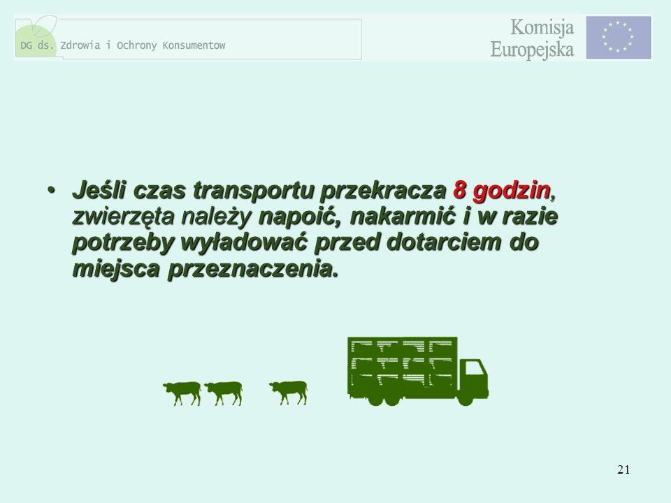 21 Jeśli czas transportu przekracza 8 godzin, zwierzęta należy napoić, nakarmić i w razie potrzeby wyładować przed dotarciem do miejsca przeznaczenia.