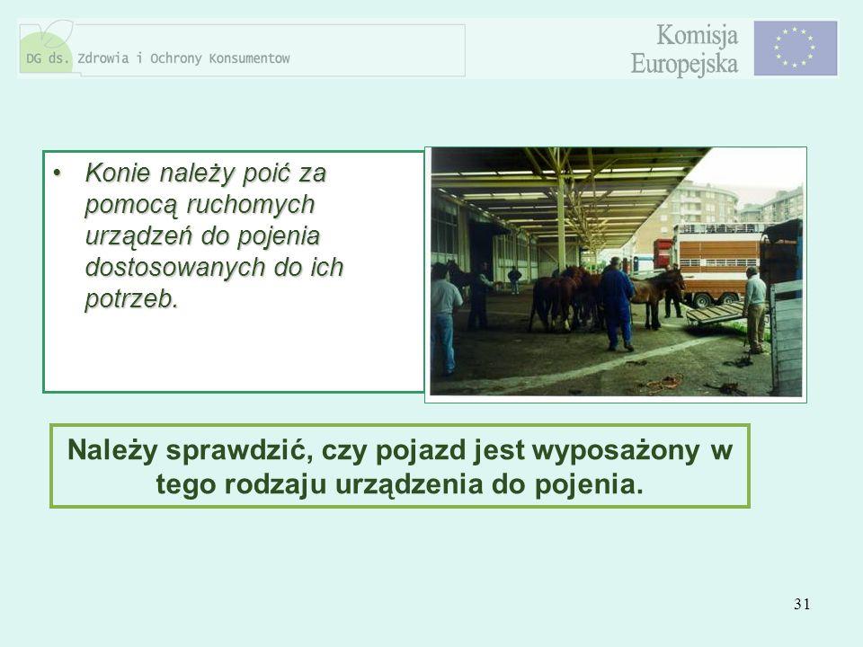 31 Konie należy poić za pomocą ruchomych urządzeń do pojenia dostosowanych do ich potrzeb.Konie należy poić za pomocą ruchomych urządzeń do pojenia do