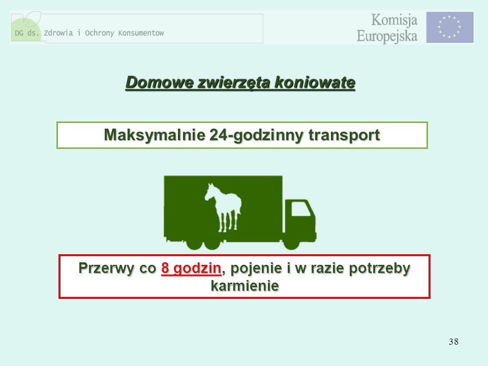 38 Domowe zwierzęta koniowate Maksymalnie 24-godzinny transport Przerwy co 8 godzin, pojenie i w razie potrzeby karmienie