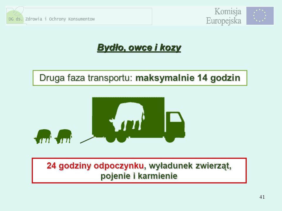 41 Druga faza transportu: maksymalnie 14 godzin 24 godziny odpoczynku, wyładunek zwierząt, pojenie i karmienie Bydło, owce i kozy