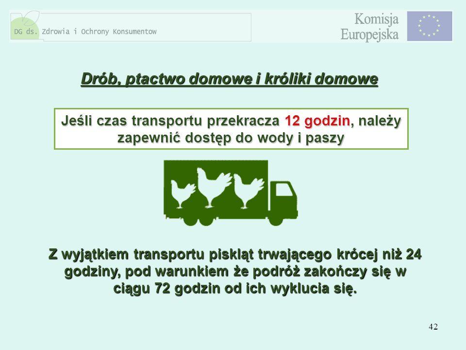 42 Drób, ptactwo domowe i króliki domowe Jeśli czas transportu przekracza 12 godzin, należy zapewnić dostęp do wody i paszy Z wyjątkiem transportu pis
