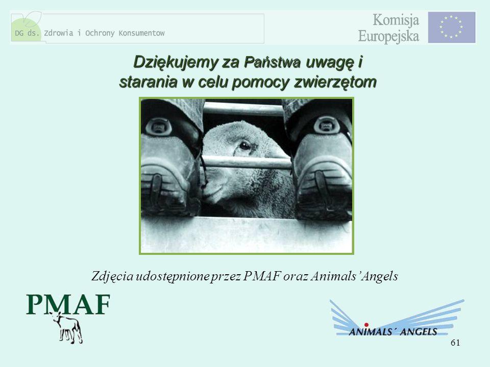 61 Dziękujemy za Państwa uwagę i starania w celu pomocy zwierzętom Zdjęcia udostępnione przez PMAF oraz AnimalsAngels