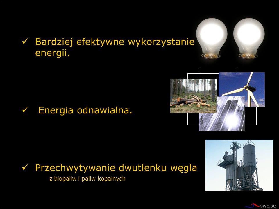 Bardziej efektywne wykorzystanie energii. Energia odnawialna. Przechwytywanie dwutlenku węgla z biopaliw i paliw kopalnych