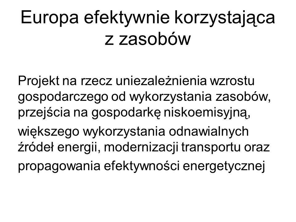 Europa efektywnie korzystająca z zasobów Projekt na rzecz uniezależnienia wzrostu gospodarczego od wykorzystania zasobów, przejścia na gospodarkę nisk