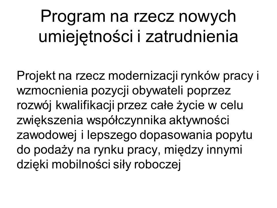 Program na rzecz nowych umiejętności i zatrudnienia Projekt na rzecz modernizacji rynków pracy i wzmocnienia pozycji obywateli poprzez rozwój kwalifik