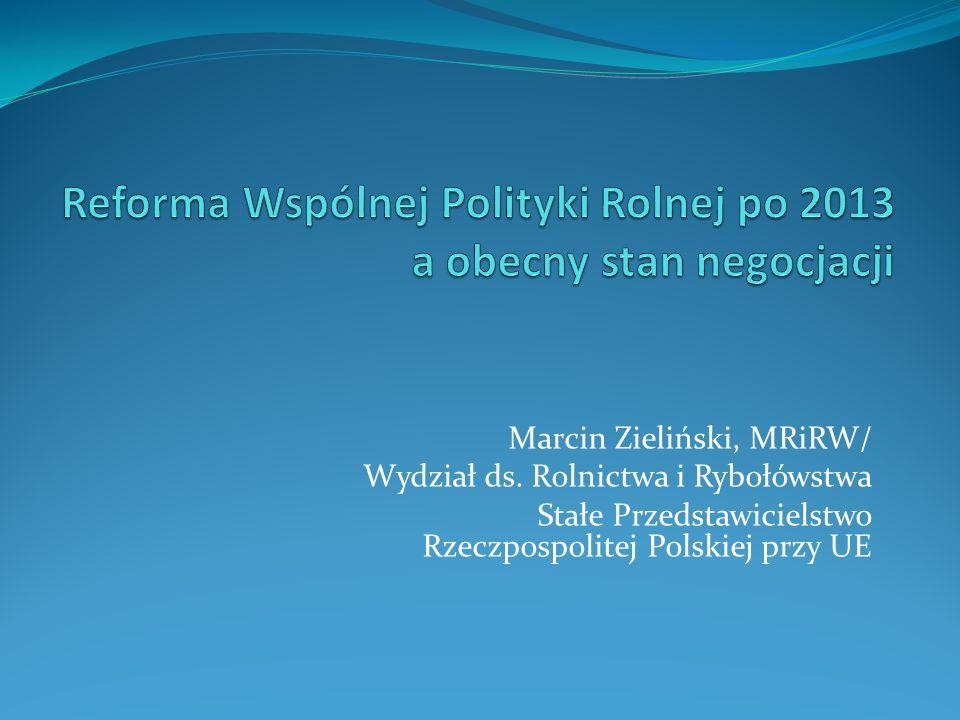 Marcin Zieliński, MRiRW/ Wydział ds. Rolnictwa i Rybołówstwa Stałe Przedstawicielstwo Rzeczpospolitej Polskiej przy UE