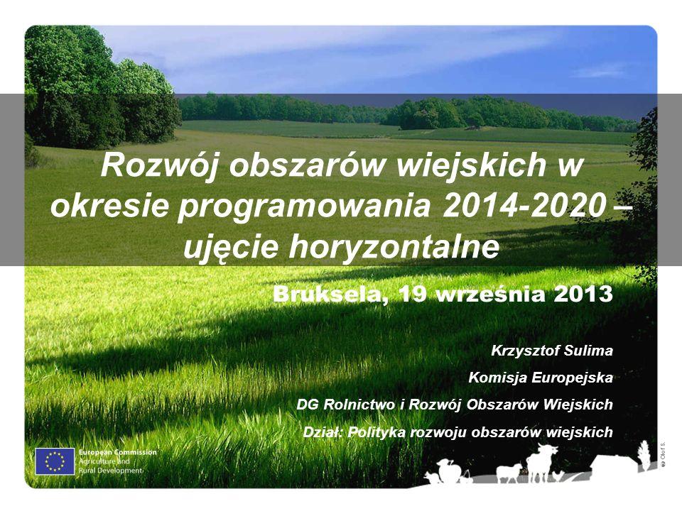 Olof S. Rozwój obszarów wiejskich w okresie programowania 2014-2020 – ujęcie horyzontalne Bruksela, 19 września 2013 Krzysztof Sulima Komisja Europejs