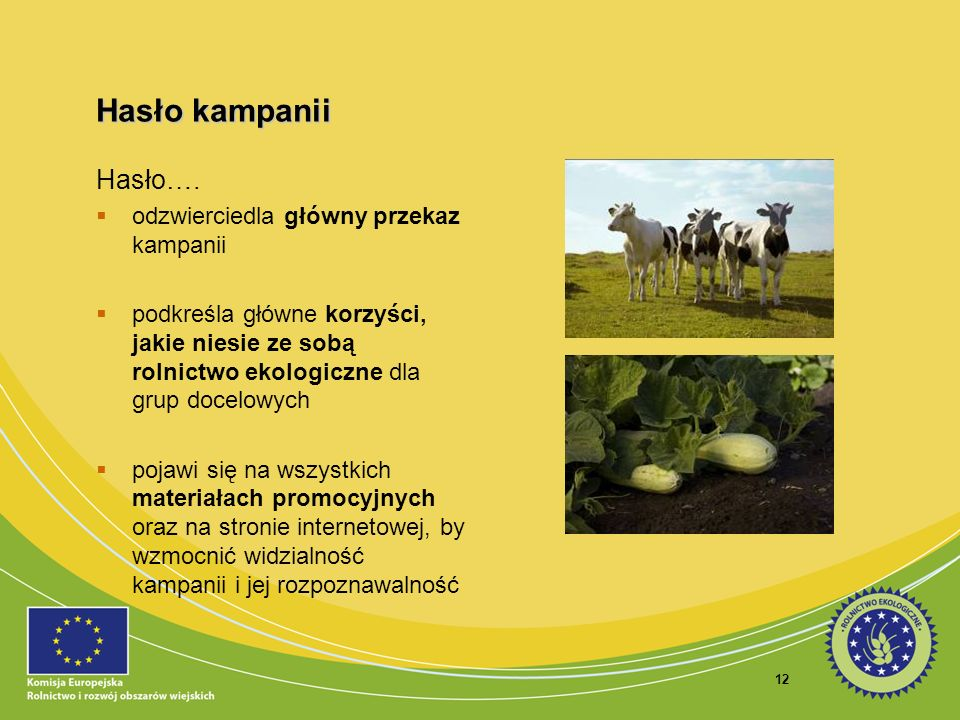 12 Hasło kampanii Hasło…. odzwierciedla główny przekaz kampanii podkreśla główne korzyści, jakie niesie ze sobą rolnictwo ekologiczne dla grup docelow