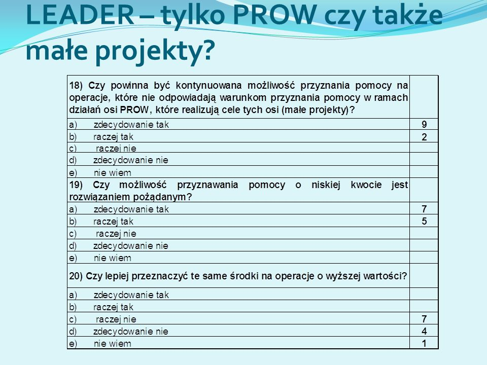LEADER – tylko PROW czy także małe projekty?